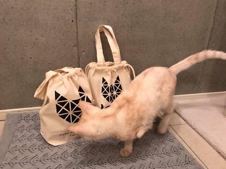 2代目猫店長と巾着トートバッグ
