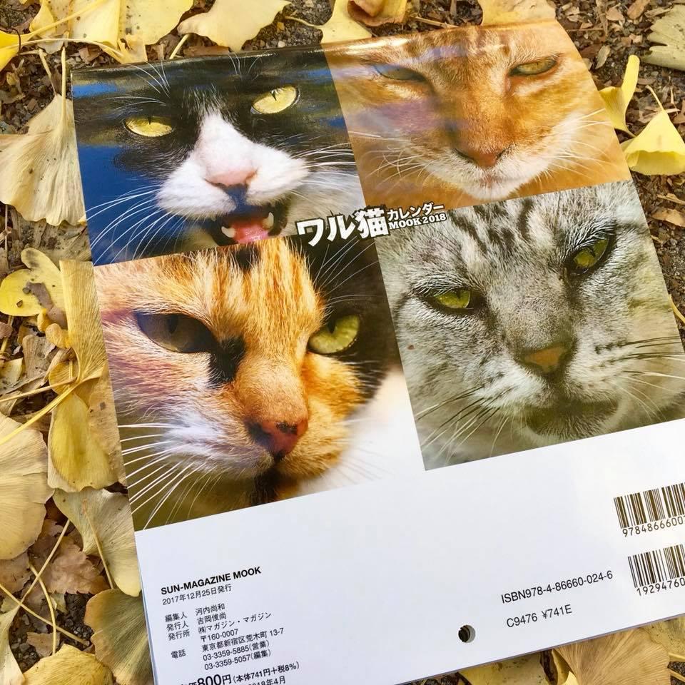 ワル猫カレンダーmook2018年版の全貌を公開10