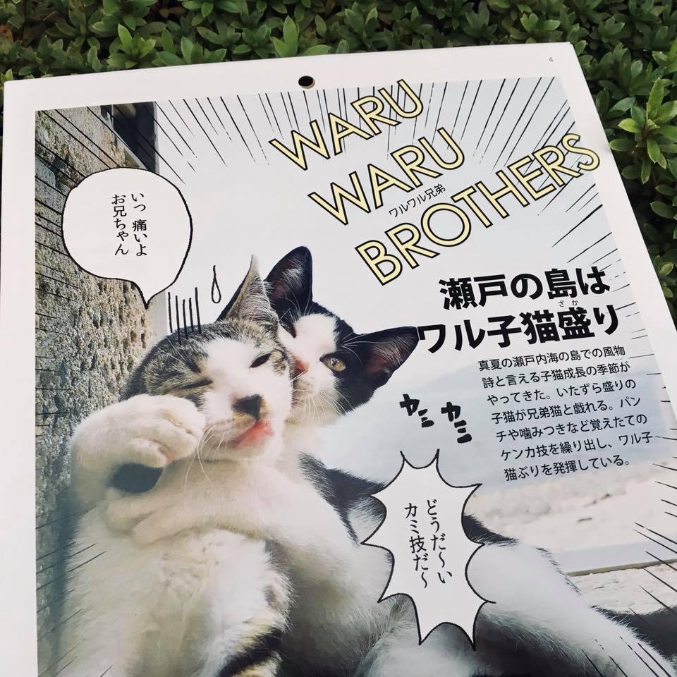 『ワル子猫カレンダーmook2018年版』全貌を公開!2