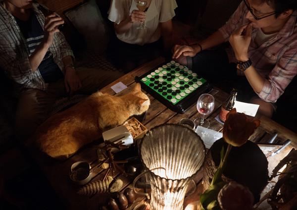 写真家MARCO_猫のいるBAR3