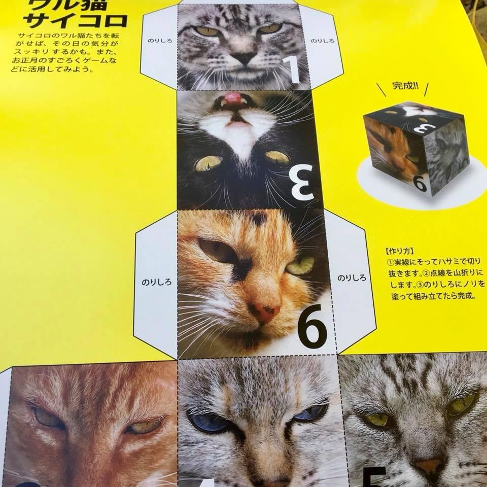 ワル猫カレンダーmook2018年版の全貌を公開9