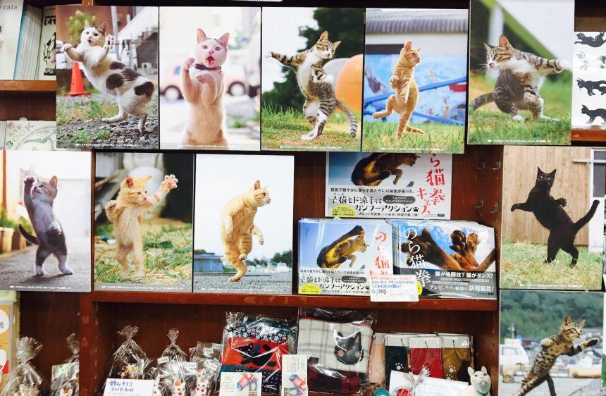 のら猫拳パネル展1