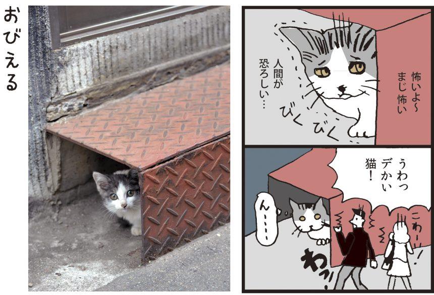 ねこニコ漫画_怯える
