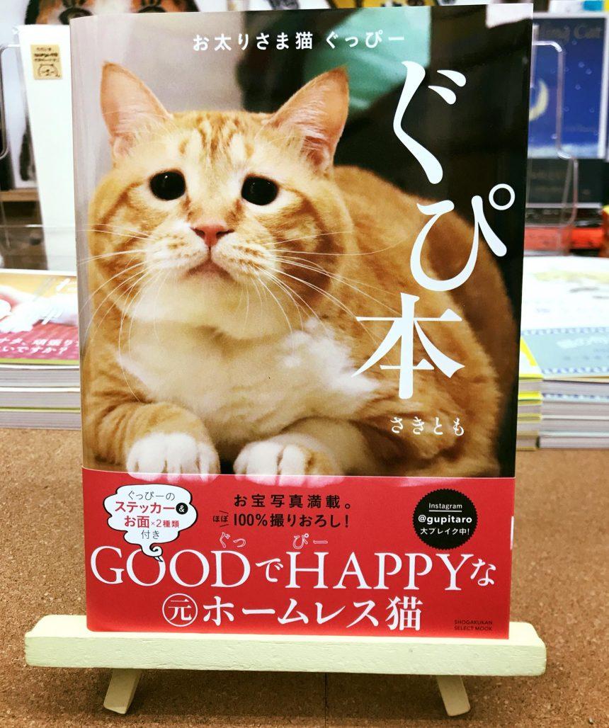 12/9(土)14:00-ぐっぴー祭開催決定7