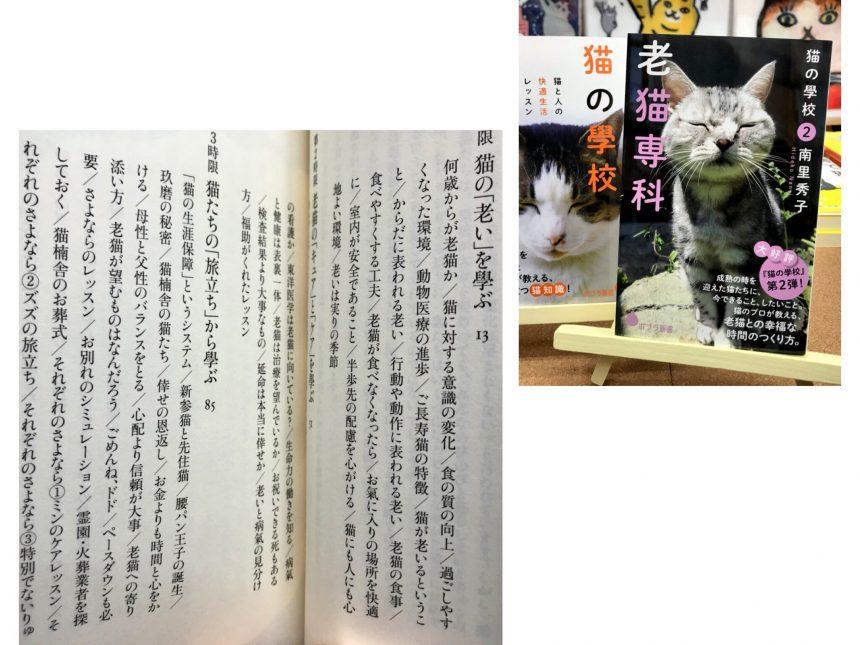 シニア猫と寄り添って暮らす心構えと、看取りを受け入れる勇気をもらえる1冊