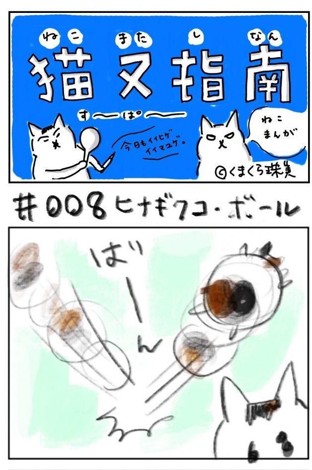 #008 ヒナギクコ・ボール
