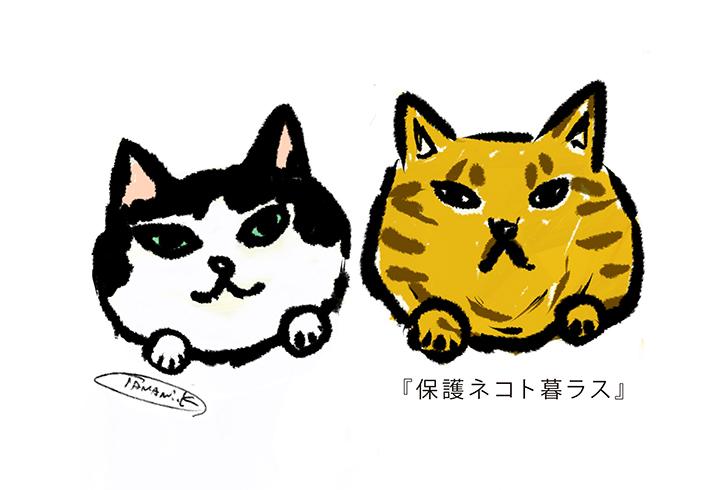 『保護ネコト暮ラス』