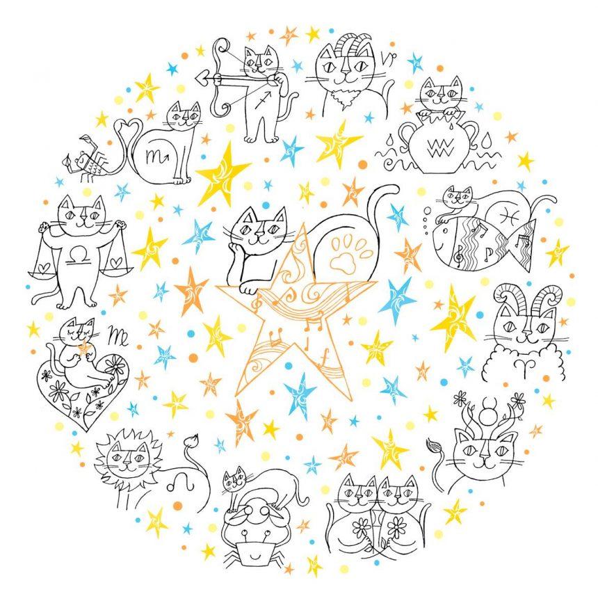 ねこ12星座&ねこ座、みんなキラリと輝いている。
