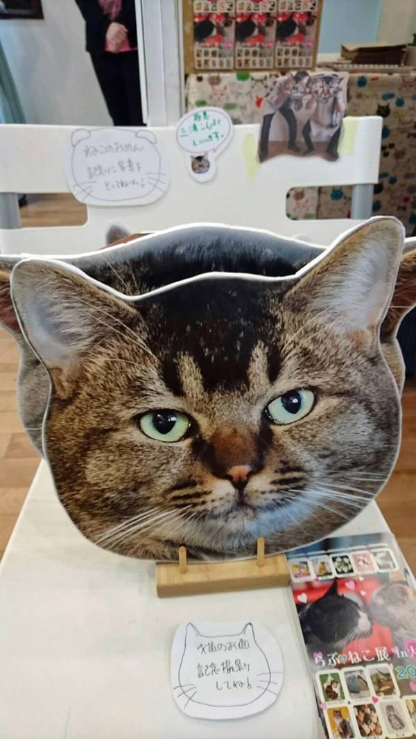 「三浦こんぶ」の猫面も撮影に大活躍!