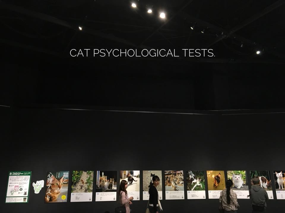 『ネコロジー・猫と心理テスト』