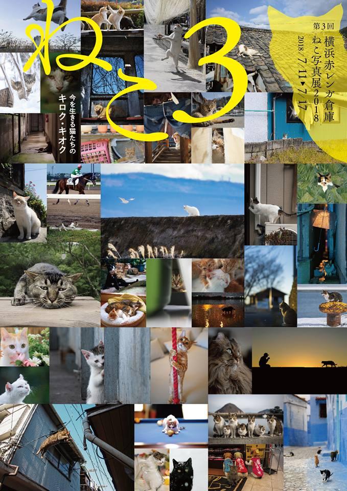第3回 「横浜赤レンガ倉庫ねこ写真展2018」