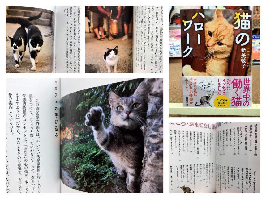 『猫のハローワーク』
