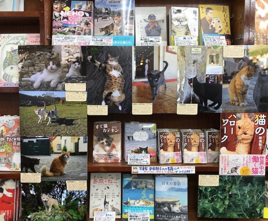 『猫のハローワーク』 発売記念パネル展inにゃんこ堂開催中