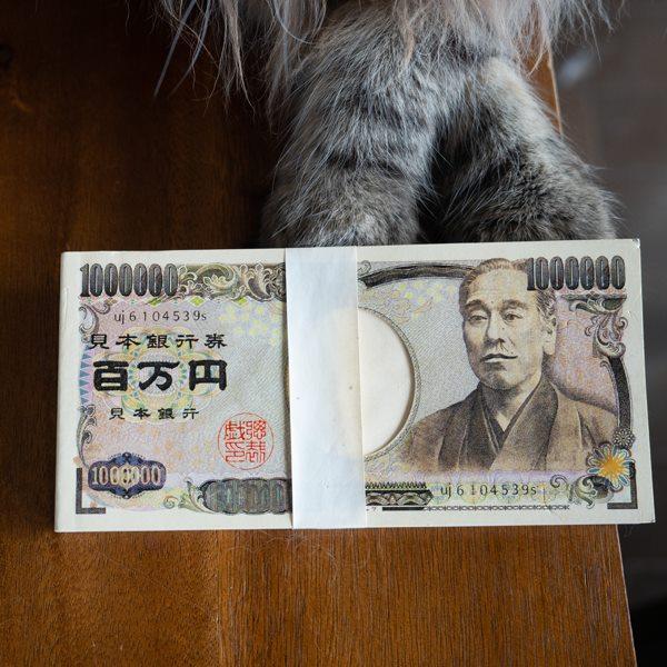 お札風の百万円メモ帳なのでした(ΦωΦ)