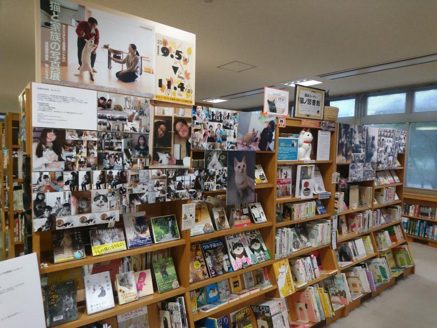 猫ノ図書館3