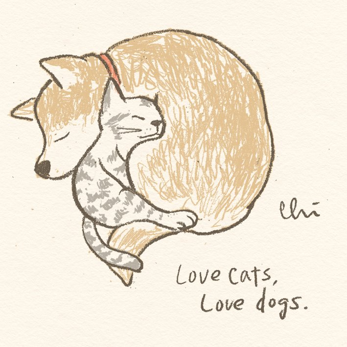 Love cats, Love dogs.
